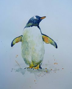 Gentoo Penguin Art Watercolor Original Animal Painting