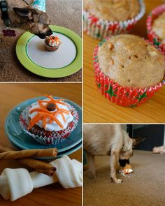 a cupcake recipe for dogs... a certain lucky Lola is getting these today because its her birthday