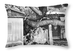 Landscape Throw Pillow featuring the drawing Power Of Nature by Michal Straska