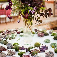 Succulent escort cards | Spencer Boerup Photography | Succulents: Cornelia Mcnamara | www.theknot.com