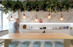 An insight into the workplace | Australian Design Review - love the plants in…