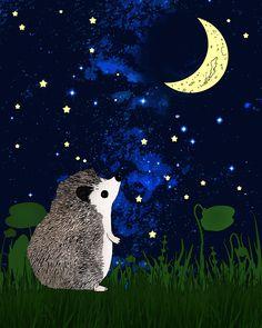 Hedgehog peering at moon drawing. Hedgehog Day, Hedgehog Drawing, Cute Hedgehog, Drawing Stars, Moon Drawing, Animal Paintings, Animal Drawings, Happy Animals, Cute Animals