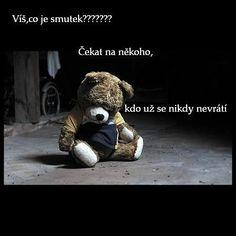 Výsledek obrázku pro citáty o sMRTI Good Morning, Teddy Bear, Memories, Motivation, Quotes, Life, Animals, Sadness, Good Day