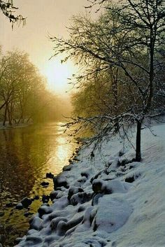 The lovely hues of winter