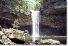 Cedar Falls Trail at Petit Jean State Park via http://exit78.com/cedar-falls/