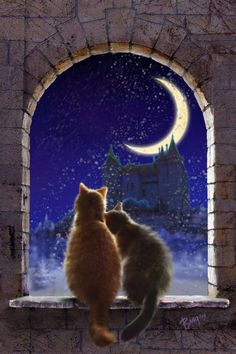 pictures of fantasy cats | ... carde. Picture (2d, illustration, cats, night, moon, castle, fantasy