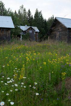 Dalarna,Sweden. Husen på Loberget