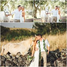 Hawaii Destination Elopement.  White horse and kissing couple against the lava rock wall.  Puakea Ranch,  Hawi