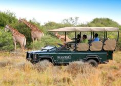 Luxury family escapes: 5 of the world's most unique experiences #family #travel #safari