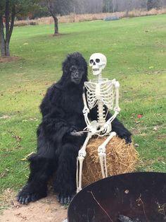 Holidays Halloween, Halloween Party, Erma Bombeck, Dark Sense Of Humor, Halloween Yard Decorations, Skeletons, Trick Or Treat, Good Times, Bones
