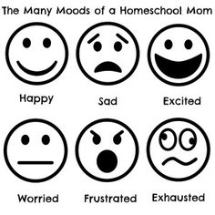 The Many Moods of a Homeschool Mom - a funny look at the different reasons for the moods a homeschooling mom might feel. | RealLifeAtHome.com