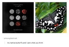 Only twenty one pilots fans would notice this