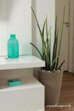 Green Life, White Houses, Floating Nightstand, Glass Vase, Planter Pots, Sweet Home, Living Room, Furniture, Home Decor