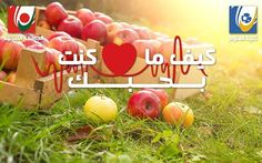 The Faculty of Science invites you to celebrate the Apple Day in support to the Lebanese Farmers on Tuesday November 15 2016 http://ift.tt/2fLScA0