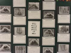 Grade 2 - The best part of me writing activity.  Could use in K for adaptations we have/ tie into animals and habitats unit.
