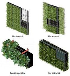 A vegetal wall whose thermal acoustic and depolluting properties make it an inno. A vegetal wall whose thermal acoustic and depolluting properties make it an inno. Green Architecture, Sustainable Architecture, Landscape Concept, Landscape Design, Vertical Garden Design, Vertical Gardens, Green Facade, Plant Wall, Garden Floor