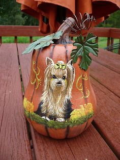 Look at this!! Love this handpainted yorkie pumpkin!! On ebay by misspaintsalot.