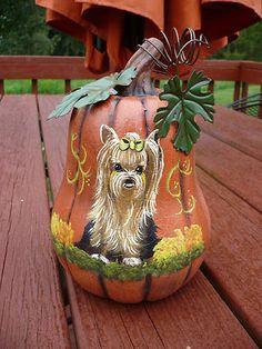 Look at this!! Love this handpainted yorkie pumpkin!! On ebay by misspaintsalot.