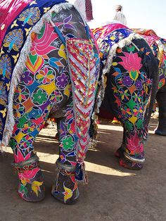 Elephant rear decorated and painted