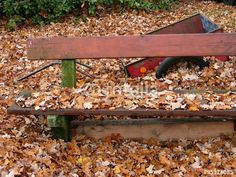 Alte Parkbankbank aus Holz mit alter Handkarre im tiefen Herbstlaub am Gut Wilhelmsdorf in OWL