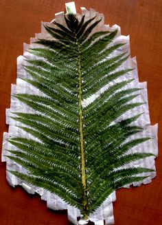 I picked the fern and used it to hammer this image into my fabric - it worked surprisingly well and color and pattern transferred nicely! The whole process is a bi laborious, as you need to lay the plant, face down, on your fabric, masking tape it on in layers and then hammer it down (I used a rubber maillot, providing a larger surface area with which to pond). I then turned the garment over, making taped side down now, and ran an iron over it to heat set the plant 'dye'!