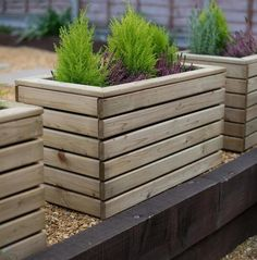 Buy Linear Wooden Planters by Forest Garden — The Worm that Turned – revitalising your outdoor space - Modern Wooden Garden Planters, Wooden Planter Boxes, Tall Planters, Wood Planter Box, Square Planters, Outdoor Planters, Flower Planters, Diy Planters, Raised Planter