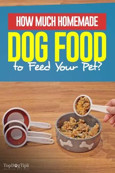 Detailed Guide on How Much Homemade Dog Food to Feed Your Dog and Everything Else You Must Know. Detailed Guide on How Much Homemade Dog Food to Feed Your Dog and Everything Else You Must Know. Home Cooked Dog Food, Make Dog Food, Best Dog Food, Pet Food, Homemade Dog Treats, Healthy Dog Treats, Best Homemade Dog Food, Homemade Recipe, Dog Treat Recipes
