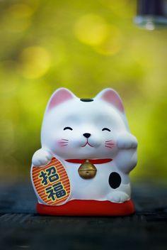 Maneki Neko - for prosperity - Japan