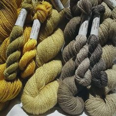 Lace-weight going off to  test knitter for Camino Bubbles by Kieran  Foley.  #naturaldyes #weld #knitting #kieranfoley #renaissancedyeing #caminobubbles #knittingkit