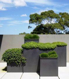 große, rechteckige Pflanzgefäße mit minimalistischem Design in Anthrazit-Grau