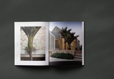 Coffee table book on the New Zealand Landscape designer Suzanne Turley. Edited and designed by Thomas Cannings. Published by Thames & Hudson. New Zealand Landscape, Coffee Table Books, Private Garden, Editorial Design, Creative Director, Art Direction, Landscape Design, Canning, Photography