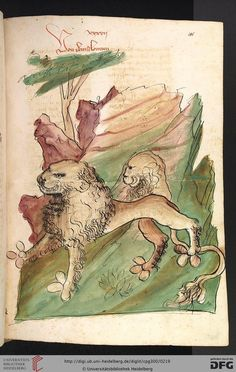 """""""Von dem louwen"""", in """"Das Buch der Natur"""", Hagenau, 1442/8?, Werkstatt Diebold Lauber, Heidelberger historische Bestände, Cod. Pal. germ. 300: Cod. Pal. germ. 300 Konrad von Megenberg"""