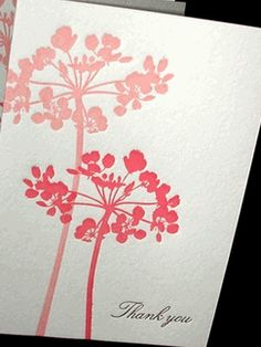 pink coriander letterpress thank you boxed note cards