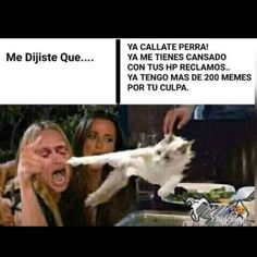 22 Memes del gatito relativamente mentiroso que te darán mil risa 9gag Funny, Funny Video Memes, Bts Memes, Funny Quotes, Hilarious, Funny Shit, Funny Images, Funny Pictures, Funny Pics