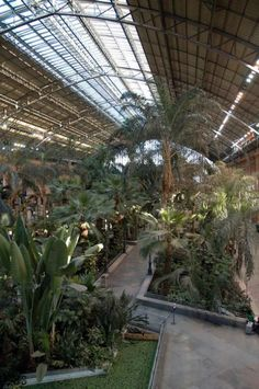 Jardín interior en la antigua Estación de Atocha. Madrid
