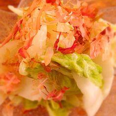 今日の晩御飯(*^_^*) - 3件のもぐもぐ - 白菜サラダ by marchhares2