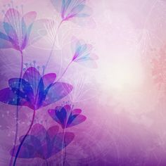 Purple Flower Frame | Size: 1024x1024 | Weight: 298.3 Kb | Views: 1278 | by Guzik