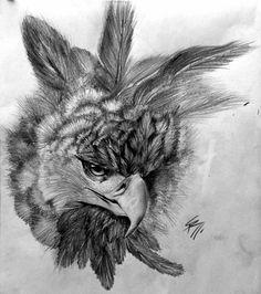 Harpy eagle sketch_by_sannay-:) Aigle Harpie, Eagle Sketch, Jaguar Tattoo, Eagle Drawing, Harpy Eagle, Shoebill, Animal Drawings, Art Drawings, Wolf Painting