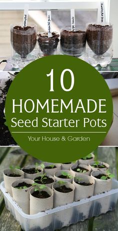 Homemade Seed Starter Pots DIY seed pots that can be made from items you probably have in your recycle bin right now.DIY seed pots that can be made from items you probably have in your recycle bin right now. Veg Garden, Garden Types, Garden Seeds, Planting Seeds, Potted Garden, Porch Garden, Garden Table, Easy Garden, Garden Art