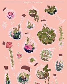 Some magical terrariums!! I feel like | WEBSTA - Instagram Analytics