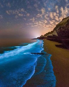 """Ocean Explorac: """"Bioluminescent Phytoplankton in the Persian Gulf : The shoreline of the Persian Gulf is aglow in blue light caused by bioluminescence,…"""" Canon Photography, Nature Photography, Travel Photography, Photography Training, Beach Photography, Photography Photos, Lifestyle Photography, Landscape Photography, Travel Photos"""
