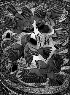 Irascibility of Robins  by Colin See-Paynton. Wood engraving. Size: 8 x 6 inches in an edition of 150. http://www.see-paynton.co.uk/ Tags: Wood engraving, British Artist, Helen Elstone, Bird, Feathers, Beaks, Claws, Wings, Eyes, Printmaking, Block Print.
