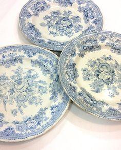 Three Blue White Plates Asiatic Pheasants Staffordshire