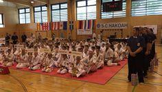 Shinkyokushinkai Austrian Open June 14th 2015 Croatia, Sweden, Basketball Court, Germany, June, Deutsch
