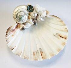 Hand-Crafted Seashell Soap Dishes - Coastal Bathroom Decor