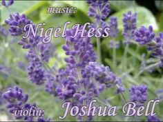 Lavender Dream - JOSHUA BELL ~ violin.. this song is so beautiful!