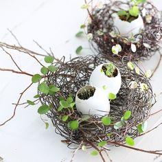 卵の殻を利用したエッグプランターは、種まきや挿し木にぴったり。ワイヤーで鳥の巣風のホルダーをつくれば、イースターの演出にも使えますよ。インテリアとしても楽しめるガーデニング、試してみませんか?
