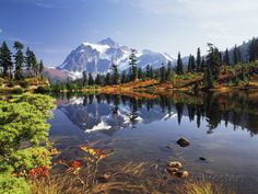 Mt Shuksan with Picture Lake, Mt Baker National Recreation Area, Washington, USA Photographic Print at AllPosters.com