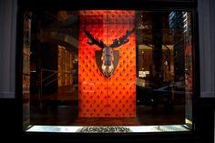 fab Spring Window Display, Store Windows, Sydney Australia, Painting, Chameleon, Display Ideas, Home Decor, Campaign, Louis Vuitton