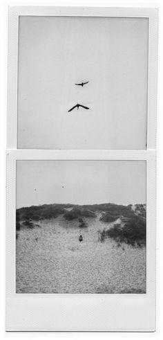 black and white photo Polaroid Pictures, Polaroids, Film Photography, Street Photography, Landscape Photography, Nature Photography, Fashion Photography, Wedding Photography, Photomontage